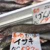 げんげ鍋&自分で握る寿司祭り