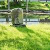 みどりゐ池(奈良県奈良)