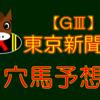 【GIII】東京新聞杯 結果