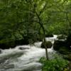 白神山地で十二湖散策→八甲田山ロープウェイ→奥入瀬渓流を旅行したので、関連書籍と一緒にご紹介。