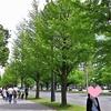 GWの東京散歩☆