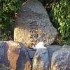 縞三毛猫と佐紀神社