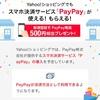 【paypay】ネットショッピングでもpaypay決済はできるのか?