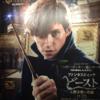 主人公は、魔法使いではなく人間だ!! 映画『ファンタスティックビーストと魔法使いの旅』
