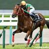 タコイチの【今週の勝負レース】緑風S!