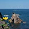 【鳥取旅行】浦富海岸の絶景を遊覧船とハイキングで楽しんできました