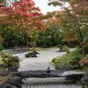 【宮城旅行記②】松島の寺院を撮り歩いてみた