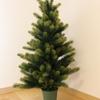3年間 調べて迷ってやっと決めたクリスマスツリー その決め手は?