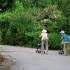 高齢者の悩みは身の回りが安定すると外へ向く