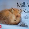 【3月16日~21日】「Milk's Radio」への参加を募集中です。