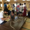 神戸帆船祭り!