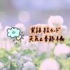 【無料DL】絵カード(フラッシュカード)で英語を覚えよう!~Weather&Seasons(天気と季節)編~
