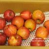 訳ありリンゴ10kgを「あがっしゃい楽天店」で3回目のお取り寄せしてみた。