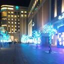 阪大医学部への道標