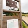 【奈良】世界最古の天文図が描かれていたキトラ古墳【明日香村】