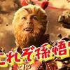 7/7:最強の猿【ポケトレ FX入門】