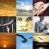 アメブロ、Instagram、Facebookに作家「比喩」さんの詩を紹介しました。