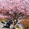 バイクに乗りたい~!!!!