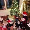 移住1年と235日目 クリスマスパーティ