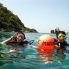 プーケット ダイビング ラチャヤイ島