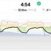 ジョギング9.55km・Iペースインターバル(今日もスピ練)