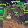 【事前準備編-2】メイン水槽お引越しリセットの話-2(水草の配置検討と課題)