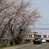 サクランピック2020 in KISOGAWADUTUMI・KASAMATU まだやるの?