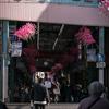 【196】葛飾区立石 深すぎる京成の下町