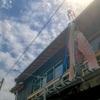 平成最後のこいのぼりを飾った平成最後の第3水曜日