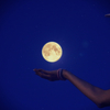 満月のパワーで・・・浄化してほしい(>_<)