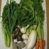 「お野菜セット」と「重ね煮」は素敵な組み合わせ ♪