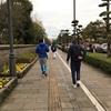 【鹿児島マラソン2019に参加しました】d( ̄  ̄)