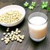 グリーンスムージー豆乳 レシピ