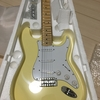 Aliexpressから購入したギター到着!!