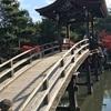 虎渓山 永保寺(岐阜県多治見市)が真っ赤に染まりました。🍁来週いっぱいが見ごろでしょう🍁🍁