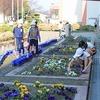 花壇コンクール(緑化委員会) 卒業式練習