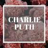 洋楽好きならこれを聞け! チャーリー・プース 名曲5選