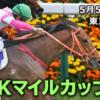 NHKマイルカップ2019【最終予想】|YouTubeチャンネルで宣言した通りの馬で勝負! ほか、新潟から2つのレースを選択して公開中