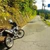 八久和ダムの紅葉を見に行こう
