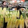 2017年〜2018年の冬に野菜の価格が高騰している理由とは?