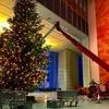 ☆クリスマスマルクト、最初の週末