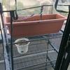双極性障害と家庭菜園 new ーパート1ー