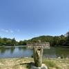 【再度山ヒルクライム】初夏の神戸山岳を堪能してみた