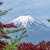 日本帰国時の3つの違和感について