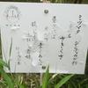 万葉歌碑を訪ねて(その527,528)―奈良市法蓮佐保山 万葉の苑(30、31)―万葉集 巻十 一八九五、巻十 一九五三