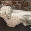 ワシこれでもライオンなんですわ〜エヴォラ美術館(ポルトガル)で