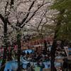 桜舞い散る春の日に
