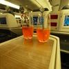 ターキッシュエアラインズ B77W ビジネスクラス搭乗記【シンガポール⇔イスタンブール】