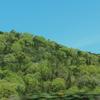 山ふくらむ