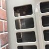浜松市で室外機に出来た蜂の巣を駆除してきました